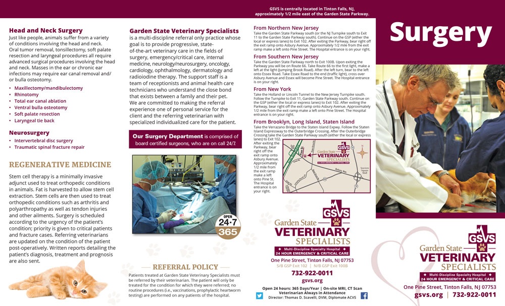 GSVS Surgery Brochure