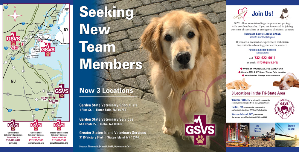 Brochures And Flyers, GSVS New Member Brochure